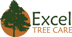 Excel Tree Care